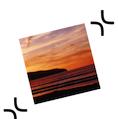 ExactScan pro V16.9.21 mac版