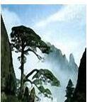 仗剑江湖行 v3.0 免费版
