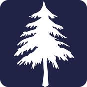 单词树 v1.0.0  安卓版