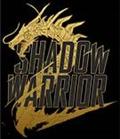 影子武士2无限读取修复补丁 v1.0 免费版