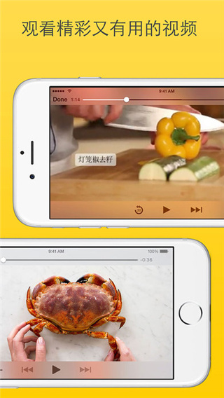 厨房故事电脑版界面图2