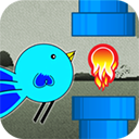 疯狂小鸟冒险 V1.0  Mac版