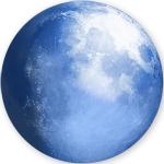 苍月浏览器(Pale Moon) v28