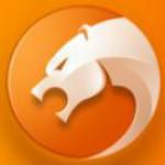猎豹安全浏览器  v6.5.115.18538 绿