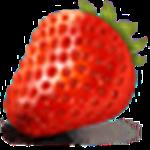 草莓文件加密器 v2.0 免费版