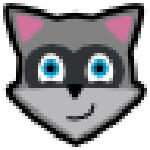 Raccoon apk下载器 v4.10.0 免费版