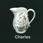 Charles抓包工具下载 V4.2.8.0 破解版